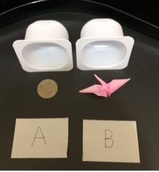 透視・予知・実験 多数の方々参加くださってありがとうございます。  答えは A:500円硬貨 B:折り鶴  でした。
