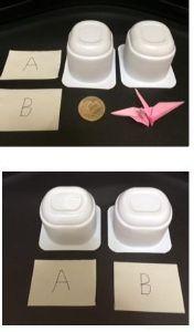 透視・予知・実験 とりあえず私から問題です。  用意したもの(画像上部) ・食べ終えたヨーグルトの空き容器 2つ。 ・