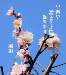 芭蕉から文月まで      「早春」       早春や渡るそよ風頬を刺す    風船