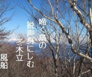 芭蕉から文月まで        「冬木立」      啼く鳥の鋭声(とごえ)身にしむ冬木立    風船