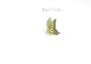 広島に住んでいます ┳┻|   ┳|_∧   ┻|ω・)    アゲハ 4    おなか減ったなー