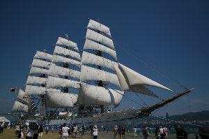 クリスマスローズ 今日の本命は帆船海王丸です。 アルカポートに昨日より入港。 今日はセイルドル 綺麗な帆を張ってくれま
