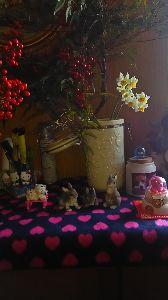 ウサギにメロメロ☆ 今年ももうおしまい、1年早かった。 今年一年お世話になりました、来年もよろしくお願いいたします。