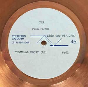 ピンク・フロイドを聴いてみた 【モメンタリー・ラプス・オブ・リーズン(1987) B-4】 末梢神経の凍結 Terminal Fr