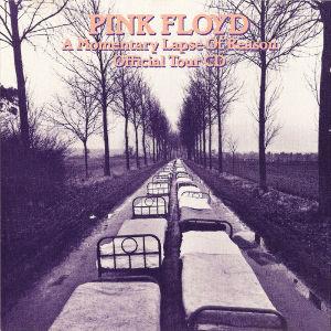 ピンク・フロイドを聴いてみた 【モメンタリー・ラプス・オブ・リーズン(1987) B-6】  Sorrow (Gilmour)