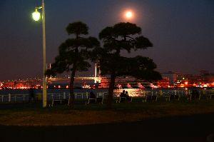 ミ♡*ْ✧ं॰*Cherry blossom petals*ْ✧ं॰*♡彡 > 横浜の夕焼けとってもきれい!> これはダンくんが撮ったの?  何か、文句でも&hel