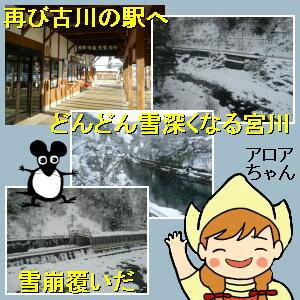 オレの船に乗れよ! 飛騨古川の駅を出た普通列車は宮川に沿って北上します。  アロア:「下流へ向かってるのに、どんどん雪深