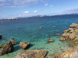新【40代のシングルの人この指とまれ♪】 久々のふうこりん♪( ´▽`) 元気そうで良かったよ。  僕ね、また沖縄行ってきた。