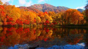 ☆金澤とことこ☆ いよいよ紅葉の季節ですね、このあたりでは福井の刈込池でしょうか?一度近くまで行ったんですが、余りに奥