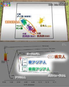 民進党もいらない 日本人のルーツは、最近サイエンスゼロでも今までのミトコンドリア遺伝子からの推測ではなく、更に極微なゲ