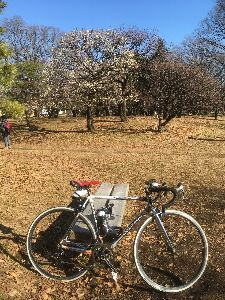 OO 自転車に乗ろう3 OO 昨日は久し振りの穏やかなポタ日和!?  ということで、9時半過ぎにしゅっぱこー!  まずは小金井公園