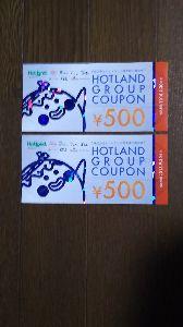 クロネコのNISA(ニーサ) 3196ホットランドの優待と配当の支払い書来ました