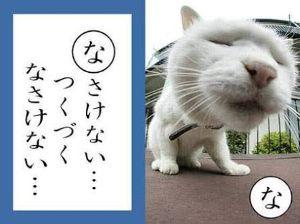 3528 - (株)プロスペクト ………(´・ω・`)ショボーン