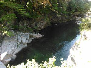 人間の毒 今月末ごろ川崎に行きます。日本橋と神田のラーメンを食べて若い女医さんとその兄の医学部一年生に会ってき