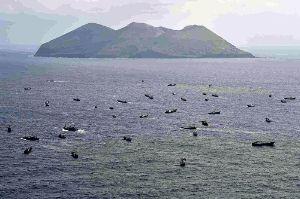 これは破滅の前兆です!! 中国のサンゴ密漁船、     伊豆諸島沖に120隻      朝日新聞社機が確認    2014年