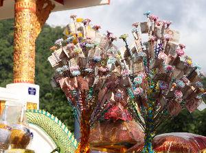 70代の皆様語り会いませんか m71さん、バラさん  おはようございます 昨日、チェンマイ県内のチェンダオの山村にある小さな寺院で