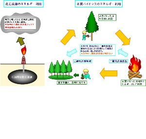 原子力とエネルギー政策 バイオマスーーー再生可能エネルギー  バイオマス (biomass) とは生態学で、特定の時点におい