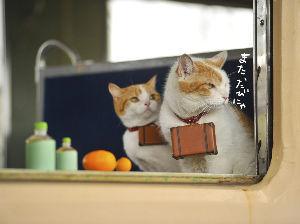 混浴温泉同好会 やはり、今は山陰のカニかなあ~^^b  日本一の美人の湯、玉造温泉とか。d良いな 倉敷から、ユッタリ