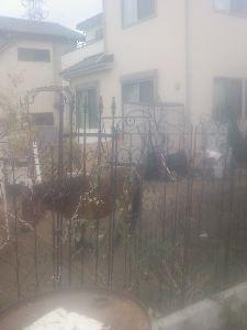写真を投稿してみませんか?! 一般住宅庭で2頭の親子馬飼っている 宇都宮市 可愛かったので投稿しました 返信の方もよろしくお願いし