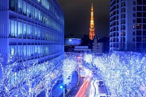 海抜0メートル地帯 とうとう、雪が 降って参りました。 通りで、寒いと 思いました。  今夜の、東京は 若しかすると、こ