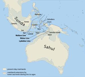 マジャンと語ろうよ♪ サーベランス  →  スンダランド   マレー半島東岸からインドシナ半島に接する大陸棚がそ