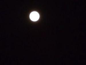 もうマスオ3じゃないぞ こんばんは。  今日は、十五夜で満月、なかなか珍しい日ですね。 次に十五夜で満月なのは、8年後の20