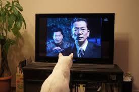 ここは楽しい阪神ファンのスレッドです では おちます おやすみなさい  よーでるはんフラダンス頑張ってくだされ テレビで応援してますわ