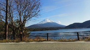 我が家のペット達です癒されて。 本栖湖から見る富士山は綺麗です。