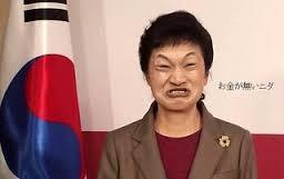 """新党新党では国は衰退する 朴槿恵の""""凄絶な叫び声""""に      欧米記者が『ここまでやるか』とドン引き"""