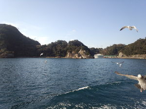 週末どこかへ行きませんか!? 皆様、今年も宜しくお願いします!  本日は今年初ツーリング伊豆下田です。 遊覧船を堪能  カワ