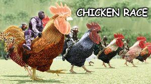 日本語雑記帳 デジタル大辞泉の解説  チキン‐レース  《〈和〉chicken+race》相手の車や障害物に向かい