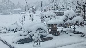 心の旅路! おはようございます!  きのうは予報どうり雪が降りました。 春のような重たい雪でした。  どんな冬に