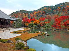 つまらない女の つまらない悩み こんばんわー☆ 蘭奈さん(^^♪   温かい1日でした。元気に過ごしています。  「京都」はお好きで