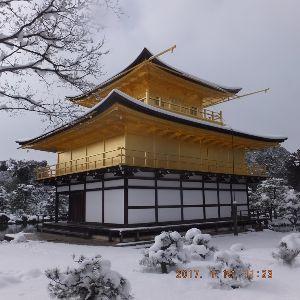 京都のタクシードライバーとお話ししませんか? 今日は行き先変更 取り敢えずその1カット  もの凄い人出でした