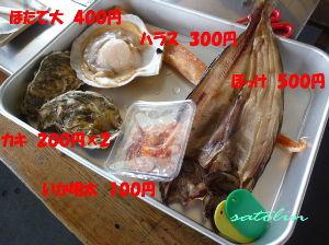 道東さんいらっしゃい!(20代~60代)人生1度きり楽しまなくては損ですよ! さらさん 北海道に来る機会がありましたら 鮭番屋にでも いきましょうね^^ 美味しいぞーーーーぅ!