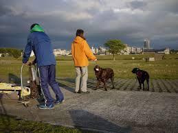 モーニング・ブレイク サーヤさん、アミさん、皆さん、お早うございます~~  此方大阪北部は、今は快晴ですよ~~此のまま温か