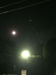 UFOを目撃された方、情報を集めています。 日時:2016年10月12日/PM10時過ぎ 場所:宝山寺参道(奈良県生駒市) 龍神雲(山からの息吹