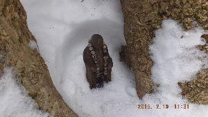 主婦の部屋♪あれこれと~ 雪の金剛山 今年初めての参加ですが その今年 今日で2度目 http://www.nankai.co