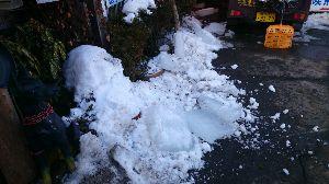 長野に帰ってきました!・・・友達探し^^ 昨日は暖かく屋根から凍りが落ちて危ないから全て落として崖に運んだ、暖かい場所で暮らしたい。昨日も、同