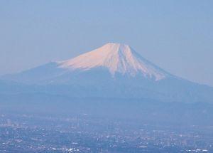 60歳になりました♪ 今日は、早朝から梅林へ。 しかし、裏山が気になり、結局、登ってきました。 富士山もクッキリと観えまし