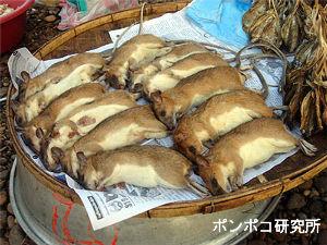 チャイナの不思議写真 まあ食文化なんだろうな
