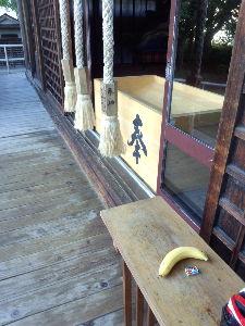 今日アスパム周辺に行く人行った人 ときには、神社にバナナが置いてあったり(そんなバナナ~~~w)