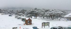行って来たよ~♪ みゅうさん   ミルクティーさん    おはようございます。  今週の月曜日、初めて鹿児島にも雪が降