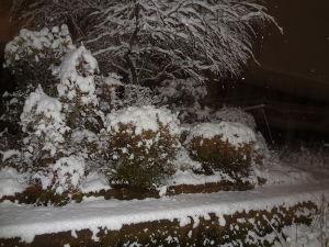 息抜きしませんか? こんばんは。  あっという間にお正月が過ぎて、もう13日。 こちら、今夜から雪が積もっています。 今