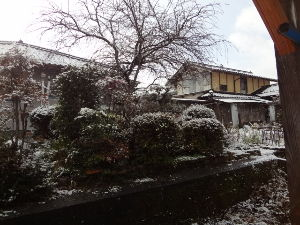 息抜きしませんか? こんにちは。  今朝の雪はこれぐらいです。 明日、明後日はまだ降るようです。