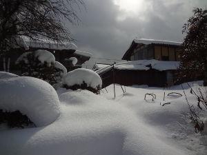 息抜きしませんか? こんにちは。  雪は、とうげを越えました。 昨日もおとといも、車の雪かきをしましたが、 今日はしなく