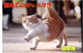 2160 - (株)ジーエヌアイグループ オカマとわ☆ 男なのに女の人のことだな♪♪♪   プッ☆   ( ・ิω・ิ)  がんば