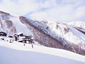 スキーなんて大っ嫌い! 明日、明後日に初滑りの人 多いですよね。 雪かな?