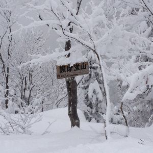 スキーなんて大っ嫌い! オオ~~掲示板が復活してた~!福井県からです。今シーズン初滑りはゲレンデではなく バックカントリース