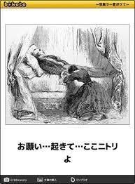 φ(・ω・ ) お願い起きて  こんばんは ニトリのベットの寝心地の良さ(?)